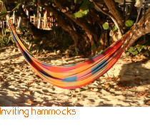 Inviting hammocks